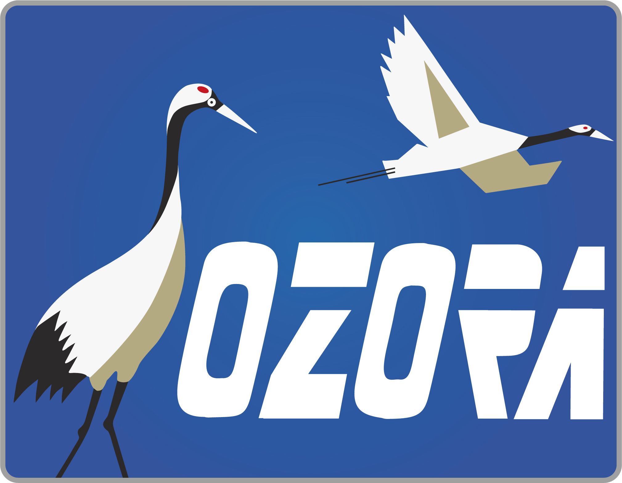 特急おおぞら号OZORA-HM